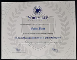 How to get a fake diploma from Yorkville University