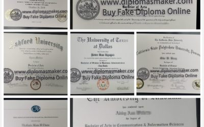 Certificate vs. Degree: What's the Difference?