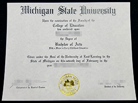 How to get a Michigan State University diploma online