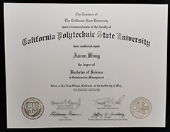 The Stuff About Buy California Polytechnic State University Diploma You Probably Hadn't Considered.