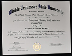 Fake Middle Tennessee State University diploma, how to buy MTSU diploma?