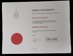 Fake certificates and transcripts from York University