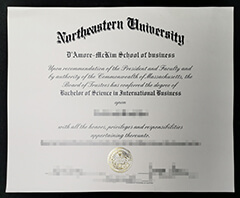 Where can I buy a certificate from Northeastern University?