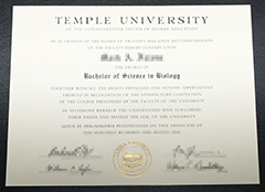 How much can I buy a fake certificate from Temple University?