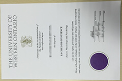 How to buy a fake Western University diploma online?