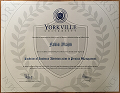 Successful Stories You Didn'T Know About Buy Fake Yorkville University Diploma