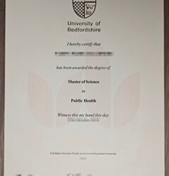 Where can I buy a University of Bedfordshire diploma?